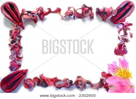 Frame Of Dried Leaves, Nuts And Flower