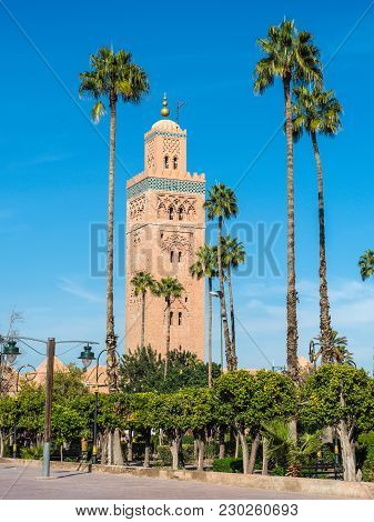 Palm Trees In Front Of The Koutoubia Mosque (kutubiyya Mosque) - The Largest Mosque In Marrakesh, Mo