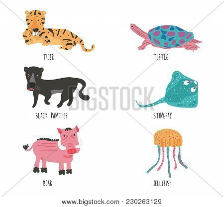 Set Of Doodle Wild  And Aquatic Animals  Cartoon With The Name Vocabulary, Illustration, Vector