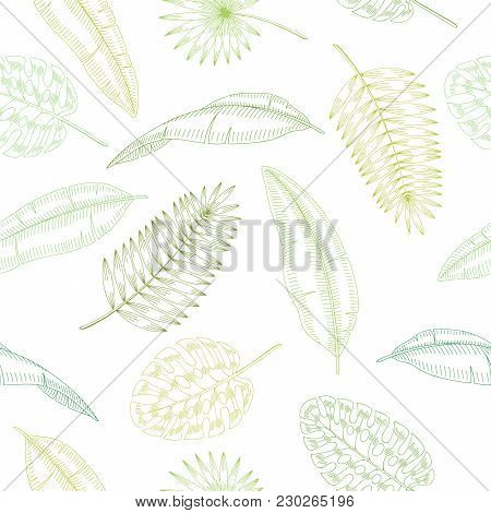 Palm Leaf Graphic Green Color Seamless Pattern Sketch Illustration Vector