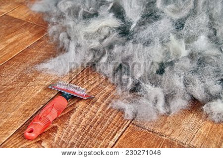 Concept Dogs Shed Spring Shedding Grooming Season. De Shedding Tool - Rakers Brush For Dog. Slicker
