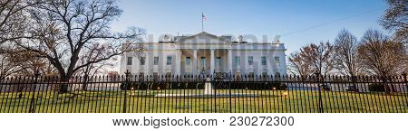 White House Rays (banner)