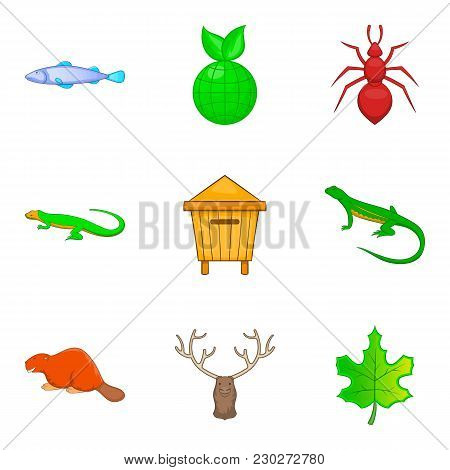 Nature Reserve Icons Set. Cartoon Set Of 9 Nature Reserve Vector Icons For Web Isolated On White Bac