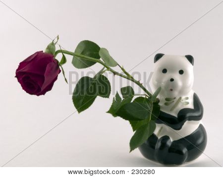Panda With Rose
