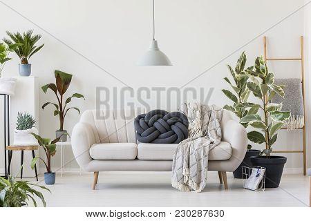 Knot Pillow On White Sofa