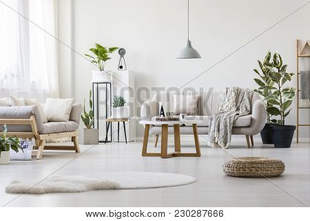 Living Room With Two Couches