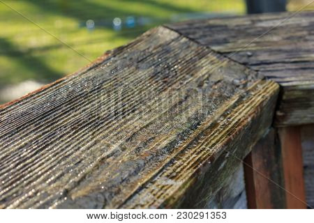 Texture Of Worn Wooden Railing With A Green Lawn In The Background