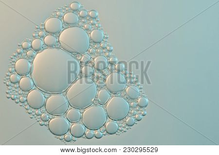 Abstract Water Bubbles Background. Group Of Small Cells