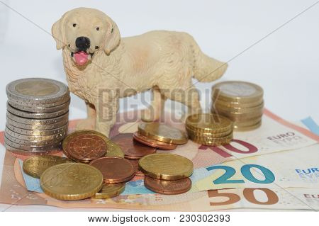 Costs Of A Pet Veterinarian, Health Insurance, Pet Doctor, Fodder We Have To Pay Much Money For Our