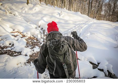 Close Up Of Hiker Walking In The Forest On The Hill Covered With Fresh Deep Snow At Sunset, Rear Vie