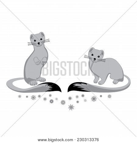 Vector Image Of Two Ermines And Decor Of Snowflakes