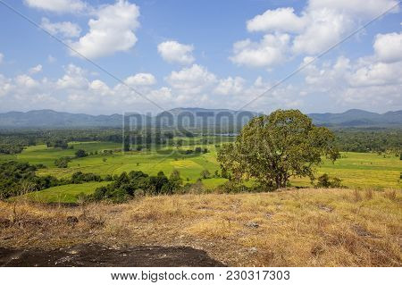 Sri Lankan Rural Countryside With Woodland Lakes And Rice Paddies Viewed From A Volcanic Rock Format