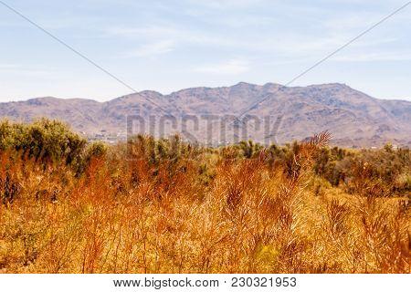 Beautiful Desert Mountain View In Apple Valley California