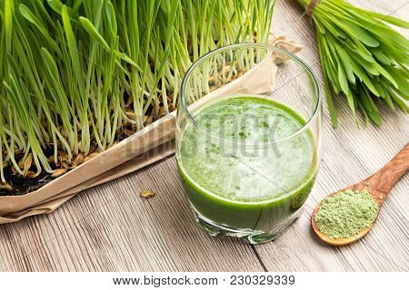A Glass Of Barley Grass Juice With Young Homegrown Barley Grass And Green Barley Powder In The Backg