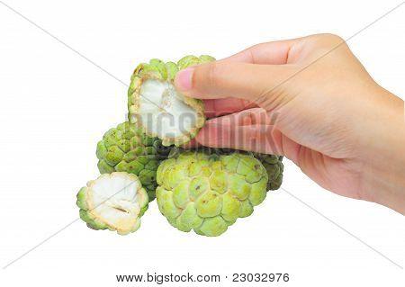 Concept fresh custard apple