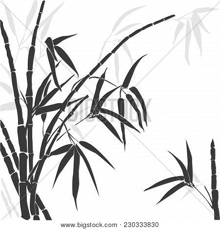 Vector Silhouette Of Bamboo. Silhouette Bamboo Gray Colors Isolated On White.