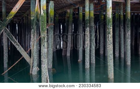Calm Water Around Pylons Underneath Pier At Low Tide