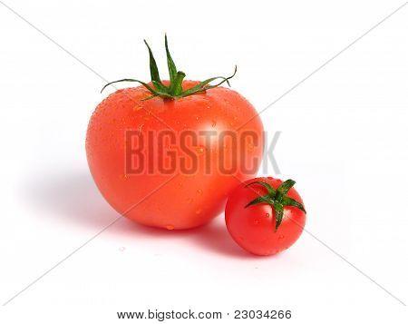 Tomato compared to cherry tomato
