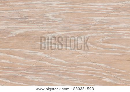 Real Natural Wood Texture And Surface Background. Hi Res Photo.