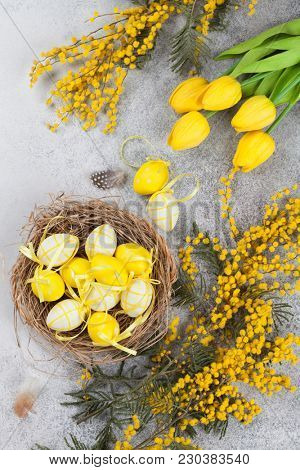 Quails eggs in nest and yellow flowers. Easter greeting card. Top view