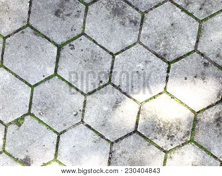 Gray Figured Pavement. Old Gray Paving Slabs-green Grass Grows Among The Tiles. Background Of Gray P