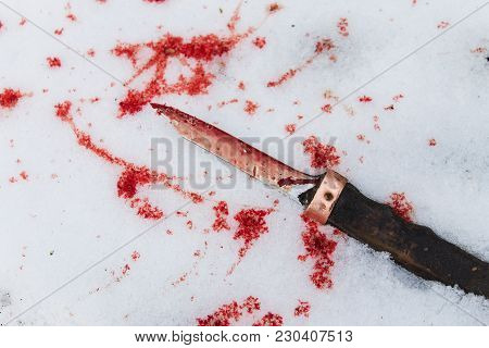 Old Dirty Knife Smeared With Blood With Blood Drops In The Snow. Crime Scene