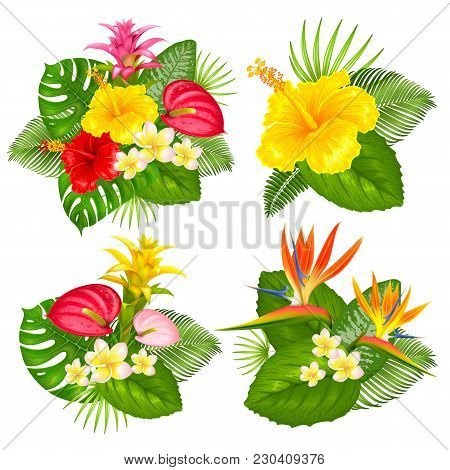 Summer Bouquets Set With Tropical Exotic Leaves And Flowers. Different Arrangement. Vector Illustrat