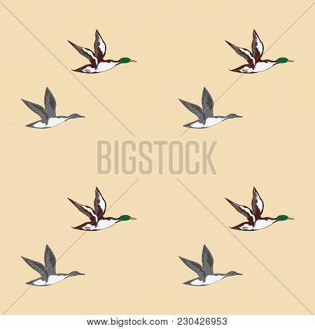 Pattern Flying Wild Ducks Light Background Art Abstract Creative Modern Vector Illustration