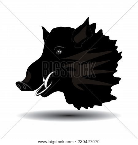 Wild Boar Head Close-up Of Black Sketch Isolated On White Background, Art Creative Modern Vector Ill