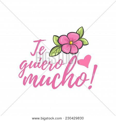 I Love You Very Much. Spanish Mothers Day Greeting. Sweet Floral Message With Happy Wishes, Card To