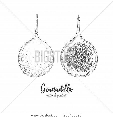 Engraved Art. Delicious Tropical Vegetarian Objects. Use For Restaurant, Menu, Smoothie Bowl, Market