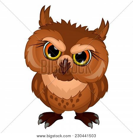 The Owl Looks Stern Look. The Vector Image.