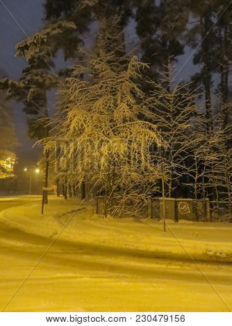 Snow At Night In The Street, By The Light Of Street Lamps.