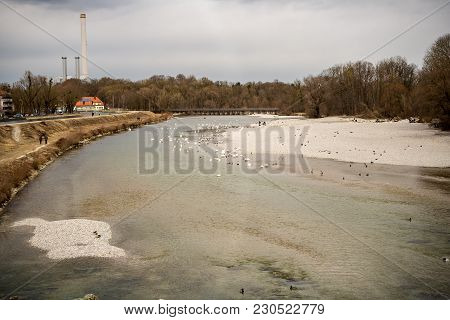 Munich,germany-march 10,2018 : People Enjoy A Warm Afternoon Watching The Swans Swimming In The Isar