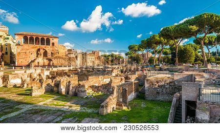 Panoramic View Of Trajan's Forum In Summer, Rome, Italy