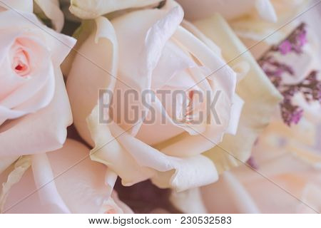 Beautiful Sweet Pink Roses Bouquet In Close Up View Macro Concept. Luxury Romantic Gift Or The Prese