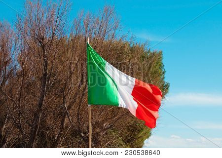 The Italian Tricolor Flutters In The Wind Against The Background Of Tree Branches And A Blue Sky Wit