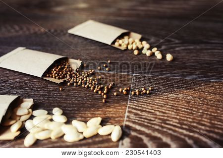 Veggie Seeds In Craft Paper Envelope. Spring Garden Preparations For Sowing Seeds, Organization And