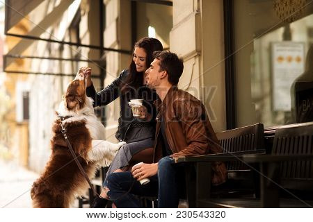 Portrait Of Happy Young Man And Woman Have Walk Outdoor With Their Pet, Feed It With Something Delic