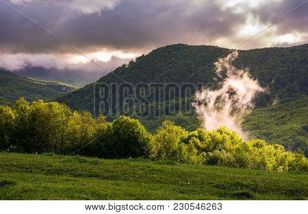 Fog Rising Above The Forest On Hillside. Beautiful Mountainous Landscape