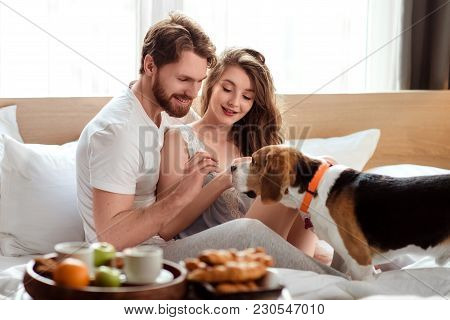 Cheerful Family Couple Spend Weekend Morning In Bed With Their Favourite Pet, Feed Dog While Have Br