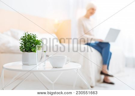 Laconic. Pleasant Calm Aged Woman Feeling Interested While Sitting On A Soft Bed With Her Modern Lap