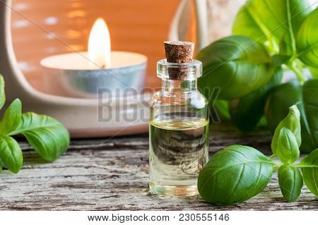 A Bottle Of Basil Essential Oil With Fresh Basil Leaves And An Aroma Lamp