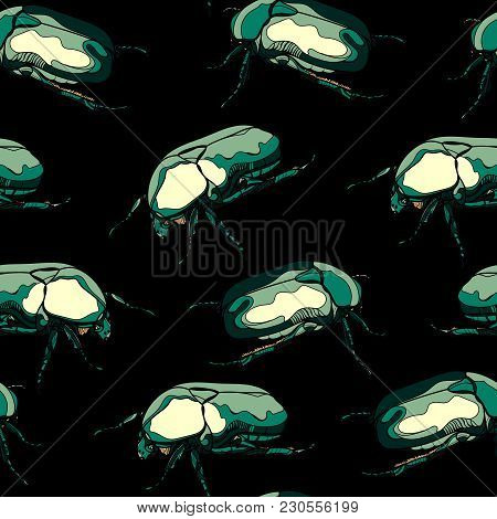 Seamless Pattern With  Scarab Beetles On Black Background. Vector Illustration.