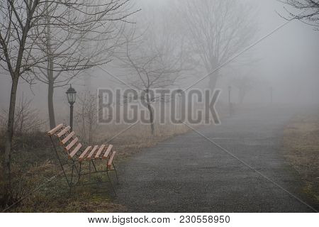 Empty Bench At Park Near Pond By Foggy Day, Minimalistic Cold Season Scene. Bench At The Lake In The