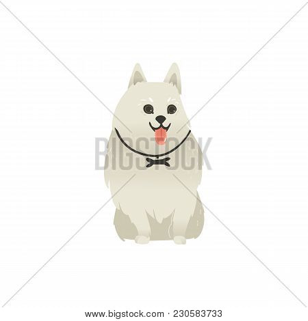 Cute Fluffy Little Dog Sitting Straight With Tongue Out, Front View Portrait, Flat Cartoon Vector Il