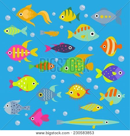Aquarium Flat Fish Vector Ocean Breeds Underwater Bowl Tropical Aquatic Animals Water Nature Pet Cha