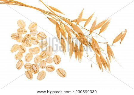 Oat Spike With Oat Flakes Isolated On White Background. Top View.