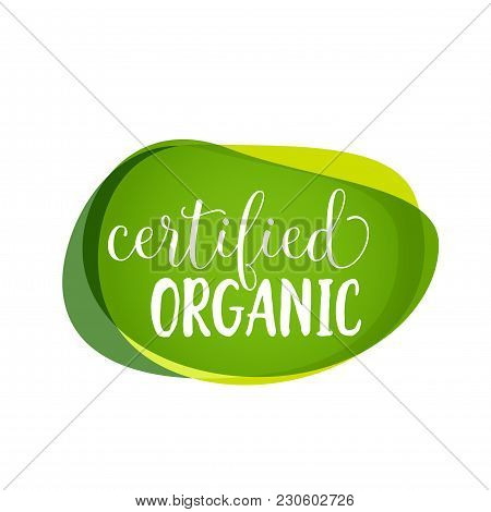 Certified Organic Lettering On Green Blots. Promotion Design Element. Handwritten And Typed Text, Ca