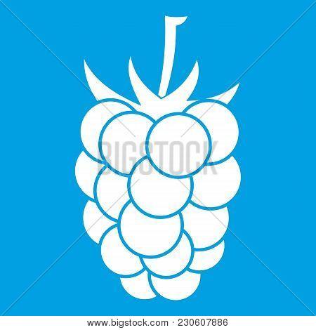 Blackberry Fruit Icon White Isolated On Blue Background Vector Illustration